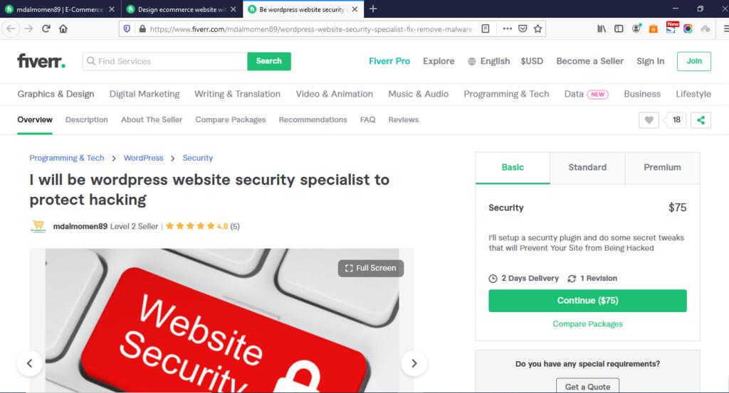 best WordPress website security gig