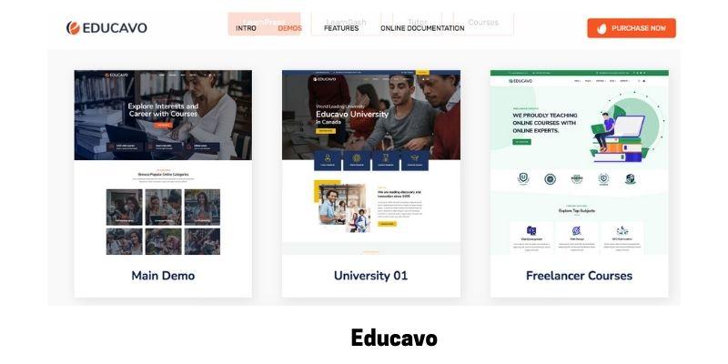 Educavo: Best online courses WordPress theme for virtual classroom