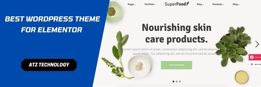What IBest Online Grocery Store WordPress Themes