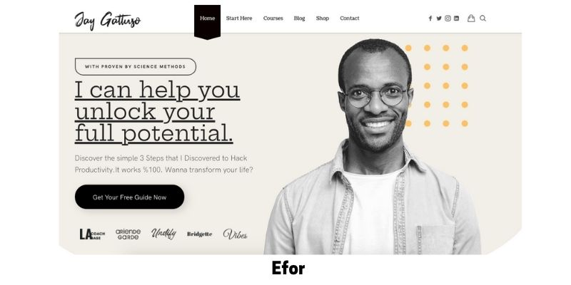 Efor: Best WordPress Themes for Life Coaches